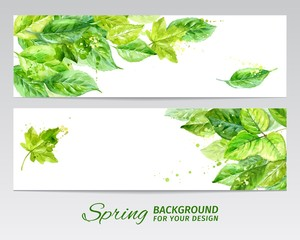 Horizontal banner with green leaves. watercolor