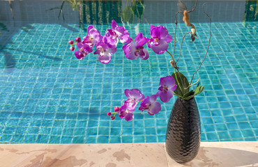 Orchid flower vase at the swimming pool