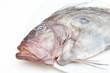 Fresh St Peter's fish on white plate head detail - 79562055