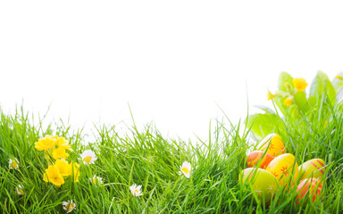 Ostern - Blumenwiese - Ostereier