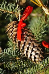 Christmas ornaments with pine cone and ribbons