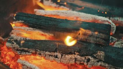 Bonfire of wood