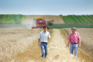 Two farmers on wheat field