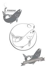 fishing asp