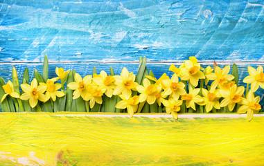 Blumegruß Narzissen Holz Hintergrund