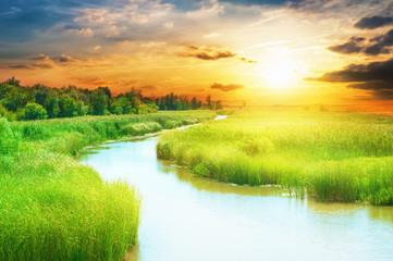 Dreamy river landscape.