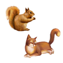 Red Squirrel eating, side view, brown Cat laying