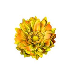 Colorful Mona Lisa flower, Spring bloom