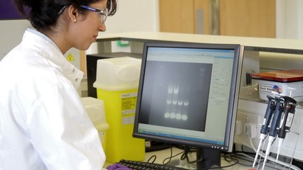 Female scientist typing on keyboard and looking at screen in laboratory