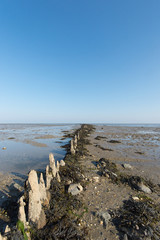 Wadden sea in Holland
