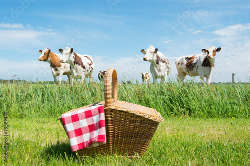 Tuinposter Picknick Picnic basket in the country