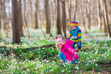 Kids playing in a spring forest