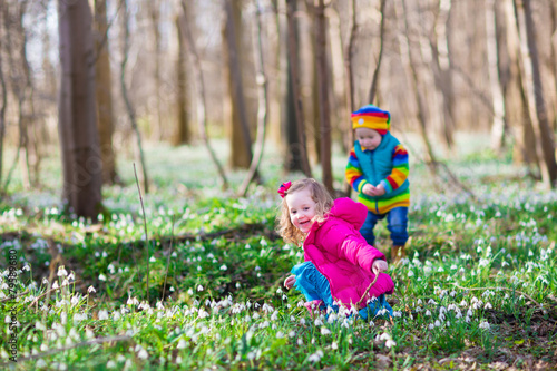 Leinwanddruck Bild Kids playing in a spring forest
