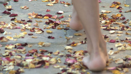 CU PAN OF A WOMAN WALKING ON PETALS ON A PATH