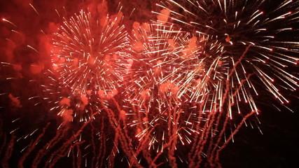 Fantastic Fireworks On Black Background in Slow mo