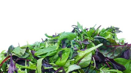 mesclun mix salad
