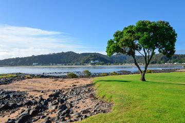 A scenic view from Waitangi Beach over Paihia coast landscape