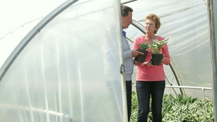 Mature couple looking at plants in green house