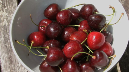 WS BOWL OF CHERRY'S ON GARDEN TABLE