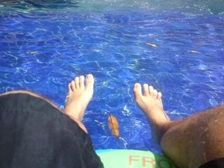 Hoja en el agua