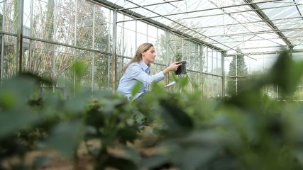 Female Scientist examining flora in a greenhouse