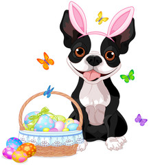 Boston terrier with Easter basket