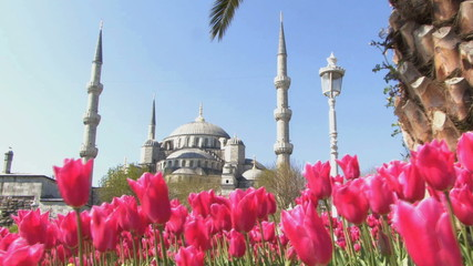 WS PAN OF THE BLUE MOSQUE ISTANBUL TURKEY
