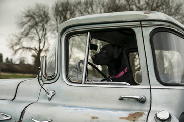 driving a vintage truck