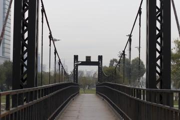 Kent ve Köprüler