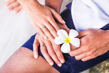 hands with wedding ring and Frangipani flowers or Plumeria
