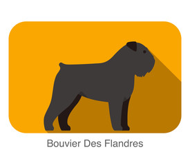 Bouvier Des Flandres dog breed standing flat icon design