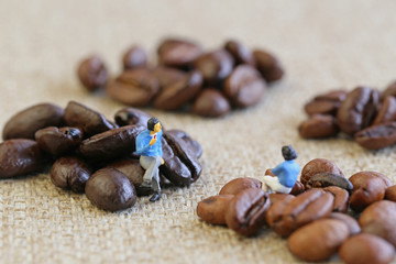 コーヒー豆と男女