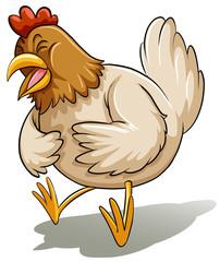 Fat mother chicken