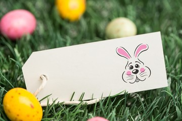Composite image of easter bunny