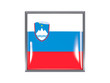 Square icon with flag of slovenia