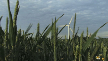 WS Wind turbine against sky green field in foreground Groningen the Netherlands