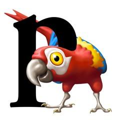 p di pappagallo