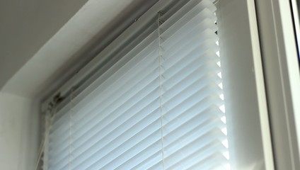 Blinds on Window