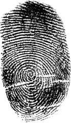 black finger print on white illustration