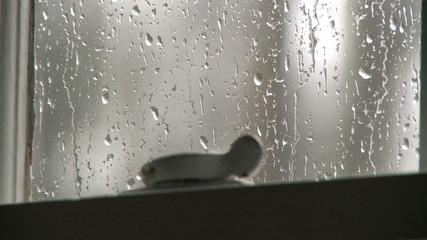 Rain falls against an old window.