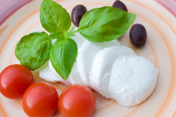Vegatarian food with mozzarella