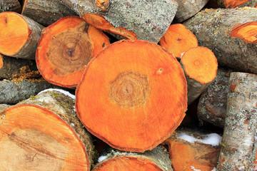 Вязанка дров ольхи