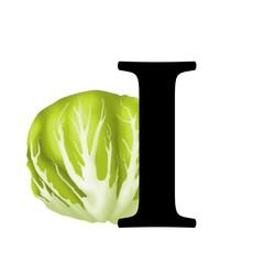I di insalata indivia