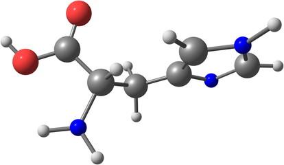 Histidine acid molecule isolated on white