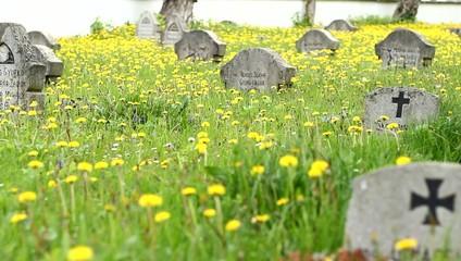 German Soldiers Cemetery