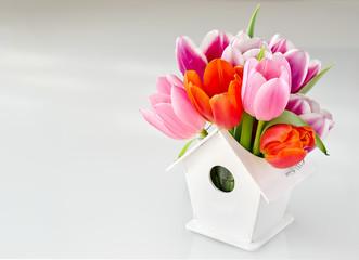 Bunch of tulips in birdshouse vase white background