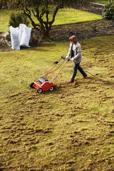 Dethatching the lawn