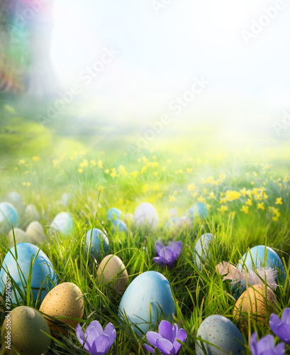 Art Easter eggs on meadow with daffodil flower - 79640065