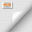 Corner - Transparent Vector - 79640402