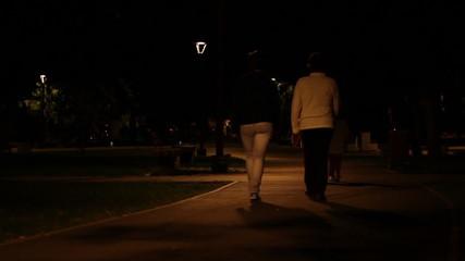 Nighttime Park Promenade
